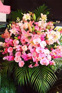 キャバ嬢に人気の花